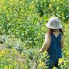 菜の花畑で遊ぶ女の子